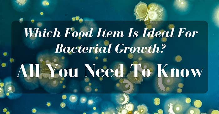 Which Food Item Is Ideal For Bacterial Growth
